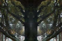 018-img_8841-totemtrees-panorama-vertical-big